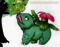 pokeaday 5-17-2011 Venusaur by Pokeaday