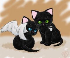 Dean and Cas as kittens by Yumezaka