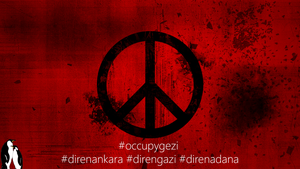 #occupygezi by erknakr