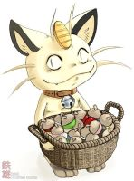 Meowth by tacticalsnake