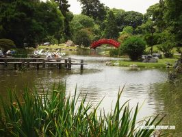 Japanese Garden 4 by andycobain
