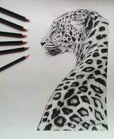 Leopard in pencil by stardust12345