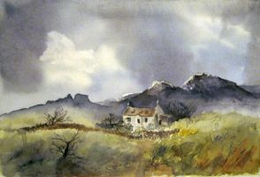 Copy of One of David Bellamy's Painting by Dandeliesque