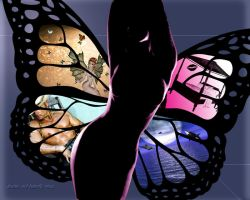 Dreams and Butterfly Wings by LadieButterfly