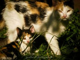 Mom and Kid by Gundhardt