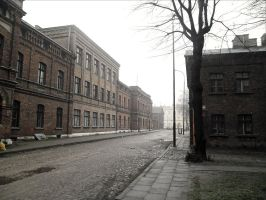 Lodz - old factory by Bloody-Daggers