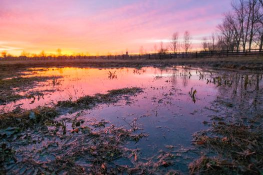 UNRESTRICTED Fiery Sunset Over Field Stock 2 by little-spacey