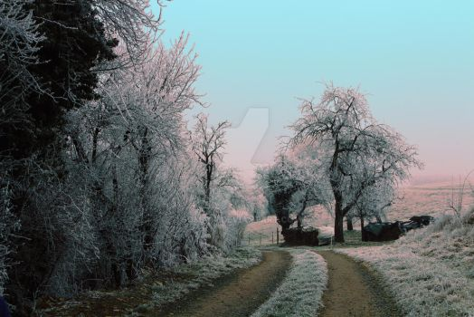 winter  by Soma64