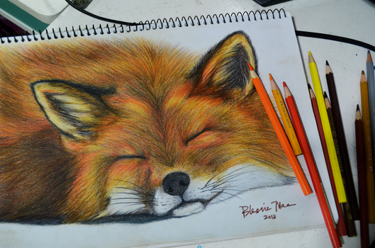 The Fox Says Zzzzzz by iblessthee13th