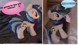 Vinyl is ready for travel to the US! by Epicrainbowcrafts