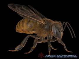 A Bee by darth-biomech