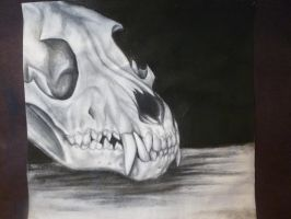 Charcoal Skull by Mg-Wolfore