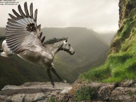Landing Pegasus by FireStormHorses
