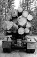 Log Truck by JessyFTW