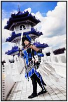 DW7 Wang Yi: The Kingdom of Wei by JoviClaire