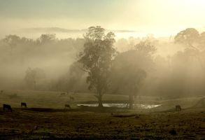 Early Morning Mist by xjames7