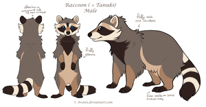 Design Commission Coonuki by Avanii