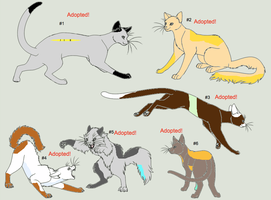 Warrior Cat Adoptables Set 2 -CLOSED- by WarriorCatLuver123