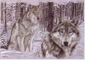 Wolves in the Snow by morgansartworld