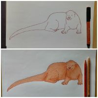 Rust Otter by x121887x