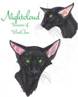 Nightcloud Faces by MudstarMord-Sith