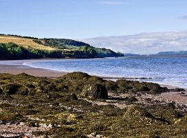 Landscape and Waterscape  2 by DundeePhotographics