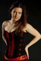 Corset from sari by Anique-Miree