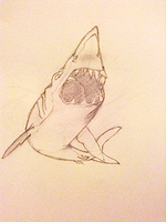 Style Trial - Great White 2 by astro-shark