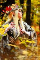 Thranduil original Cosplay 07 by Megane-Saiko