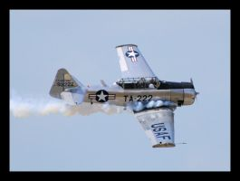 Texan Photo Pass by ViperPilot