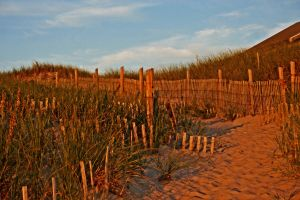 Ryders Beach at sunset by tracykenefick