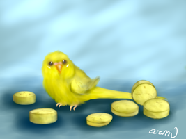 Banana Budgie! by amerillo342