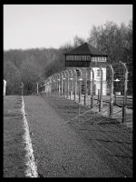 Fence: North Side by deadward1555