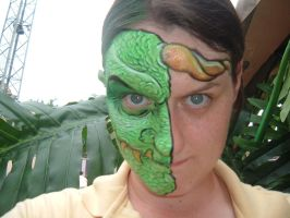 Face Paint- Dragon Face TWO by Jshibby