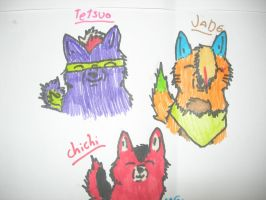 Tetsuo,Jade and ChiChi by Kihomi-doglover