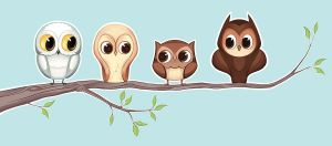 Owlies by taylorsmith