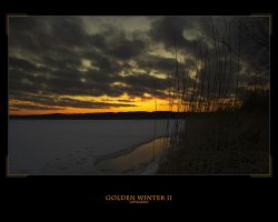 GOLDEN WINTER II by voytela