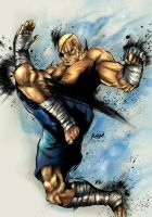 Street Fighter 4: Sagat by optimumone