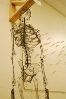 Wire Skeleton 2 by Squeep