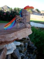 Rainbow Dash Woodwork II by xofox