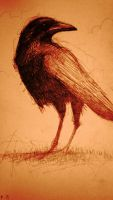 crow in rust tones by SethFitts