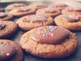 chocolate crunch cookies. by zoeil