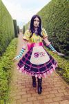 Alice Madness Returns - Stay on the Path by Medowsweet