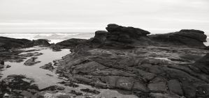 Yachats intertidal zone - monochrome - 035 by ISeeTheLattice
