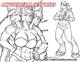 March2 Livestream Sketch Commission 2 by lady-cybercat