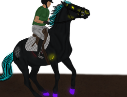 Training by Thoroughbreds4Me