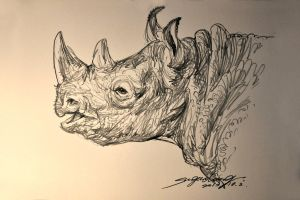 BLACK RHINO by banhatin