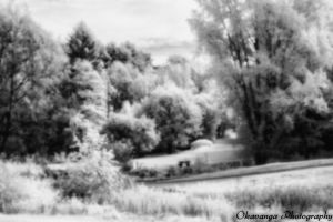 Pinhole IR Photography 1 by Okavanga