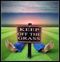 I Won't Keep Off The Grass by BenHeine
