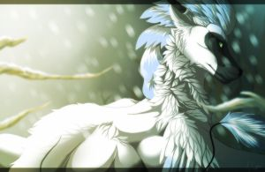 Winter Winds Sonnet by Studios-Of-White